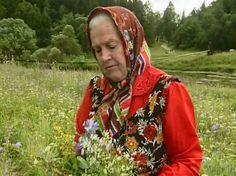Монастырская травница: Не хотите болеть — накопайте себе три корня — лопуха, пырея и одуванчика.