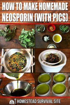 Healing Herbs, Medicinal Herbs, Natural Healing, Natural Health Remedies, Herbal Remedies, Natural Medicine, Herbal Medicine, Homemade Neosporin, Health Tips