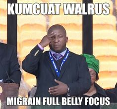 """""""Kumcuat Walrus - migrain full belly focus"""" Deaf person, alpha-not-omega, translates what was signed at Mandela's memorial service Best Funny Pictures, Funny Photos, I Am Confused, Confused Meme, Sign Language Interpreter, Deaf Culture, American Sign Language, Funny People, Funny Things"""