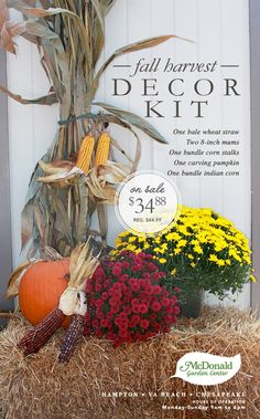 Fall decorating just got easier. Fall Decor Kit includes: • One Bale Wheat Straw • Two 8-inch Mums • One Bundle Corn Stalks • One Carving Pumpkin • One Bundle Indian Corn