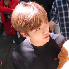 "。 jae on Twitter: ""เวนเน้ย น้องแบบหล่อมาก(ಥ﹏ಥ)(ಥ﹏ಥ)(ಥ﹏ಥ)(ಥ﹏ಥ)(ಥ﹏ಥ)(ಥ﹏ಥ)(ಥ﹏ಥ)… "" Black Heart Emoji, Nct Dream We Young, Nct Dream Jaemin, Nct Life, Lucas Nct, Na Jaemin, Winwin, Boyfriend Material, Jaehyun"