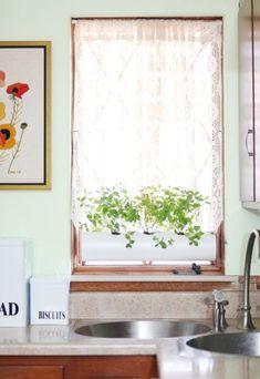 Horta na janela da cozinha é ótima opção para também ter temperos sempre à mão (Foto: abeautifulmess.com)