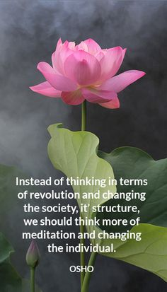 Instead of thinking in terms of revolution and changing the society, it' structure, we should think more of meditation and changing the individual. Osho