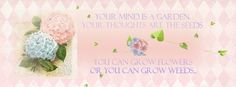 Free facebook cover by Dolly