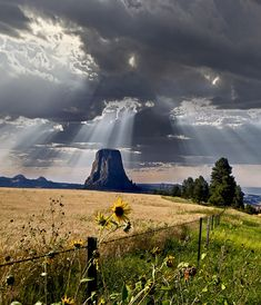 Devils Tower by Brad Cheese (Wyoming)