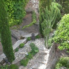 Secret Garden. Cannes, France 10 Traverse de la Tour, 06400 Cannes, Frankreich