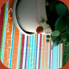 patio table makeover with a vinyl table cloth in minutes - simple & cute