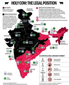 """@amapaday   """"As the cow is considered a sacred animal in Hinduism, in some Indian states you can get up to 10 years in prison for cow slaughter; this map shows the punishments for each state"""" ➖ Cattle slaughter in India is a historically taboo subject because of the cow's traditional status as a respected creature of God in Hinduism. Dairy products are extensively used in Hindu culture and are one of the most essential nutritional components of Hindu meals. Article 48 of the Constitution..."""
