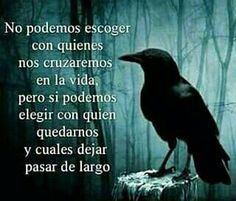 True Quotes, Motivational Quotes, Inspirational Quotes, Quotes En Espanol, Life Words, Cartoon Pics, Sentences, 1, Wisdom