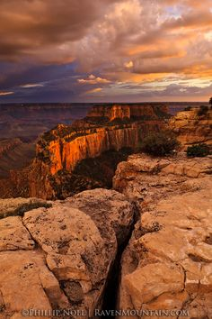 Cape Royal, North Rim, Grand Canyon National Park, Arizona.