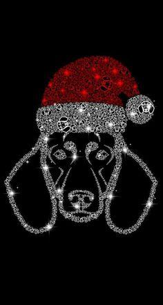 Interesting Beagle Friendly Loyal And Loving Ideas. Glorious Beagle Friendly Loyal And Loving Ideas. Weimaraner, Vizsla, Dog Love, Puppy Love, Funny Dogs, Cute Dogs, Baby Dachshund, Daschund, Calm Dog Breeds