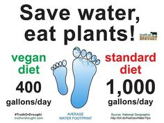 11 Reasons Why Going Vegan Helps Save The Planet save water eat plants - truth or drought