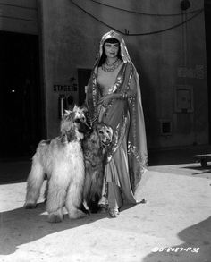 Rhonda Fleming with Afghan hounds.