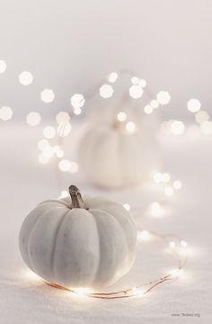 Pumpkin fairy lights ♡