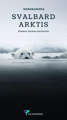 Abenteuer in Spitzbergen (Svalbard). Mit einem kleinen Expeditionsschiff rund um Spitzbergen fahren. Eisbären, Packeis und unfassbare Landschaften. Mein Bericht zum Trip! Reisen In Europa, Places To See, Travel Destinations, German, Wanderlust, Polar Bears, Group, Board, Traveling Europe