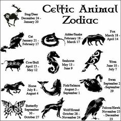 In-depth descriptions for all 13 CELTIC ZODIAC SIGNS. Learn all about your Celtic Animal Zodiac meanings, personality & traits. Celtic Astrology, too! Celtic Animals, Book Of Shadows, Numerology, Magick, Wicca Witchcraft, Spirituality, Libra, Aquarius, Pisces Horoscope