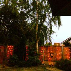 Fairy lights along the bottom of the garden. Lovely mood setter.