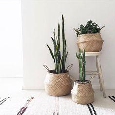 Loving these cute baskets! 📸: @thenursery.co