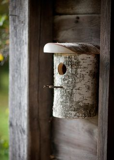 Birch Birdhouse