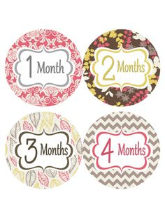 monthly baby stickers girl baby month sticker instant download pink
