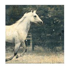 Run Baby Run, Run With The Wind / Homestretch Horse Art