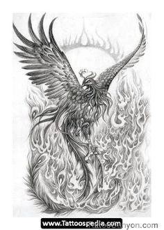 Best Outline Phoenix Tattoo Design photo - 1