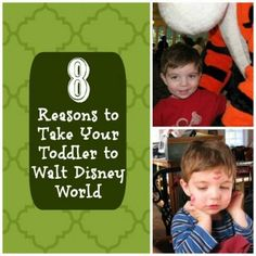 8 Reaons to Take Your Toddler to Walt Disney World - Babble