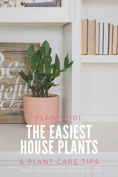 How to care for house plants even if you have a black thumb! Decorating Blogs, Decorating Your Home, Diy Home Decor, Cool Diy Projects, Home Projects, Detox Your Home, Easy House Plants, Home Decor Inspiration, Decor Ideas