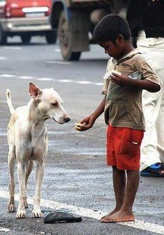 ♥  only a child with hardly anything would help a starving animal......only a child.....