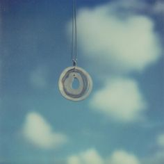 Tree rings against the deep blue sky. Polariods by Brooke Williams!