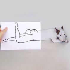 Der brasilianische Illustrator Rafael Mantesso macht wunderbare Hunde-Kunst mit seinem Bullterrier Jimmy Choo