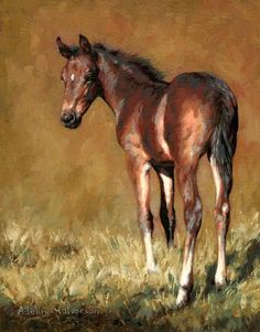 PRINT & FRAME Adeline Halvorson Artworks - Canadian Artist specializing in paintings of animals Animal Paintings, Horse Paintings, Pastel Paintings, Horse Artwork, Cowboy Art, Horse Drawings, Equine Art, Canadian Artists, Horse Pictures