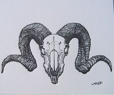 ram skull illustration tattoo back - Google Search