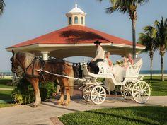 Horse-drawn carriage at Moon Palace, Cancun