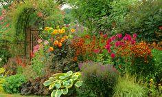Garden Ideas, Border ideas, Perennial Planting, Perennial combination, Summer…