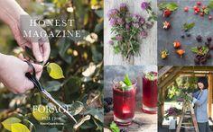 Honest Magazine: Forage, Fall 2015  Foraged tutorials, information, recipes and inspiration.  HonestQuarterly.com © Honest Magazine