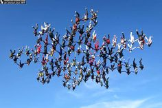 138 Skydivers Breaks Vertical World Record in Illinois. Source: http://www.wc-news.com/skydiving-sensation-breaking-world-skydiving-record/