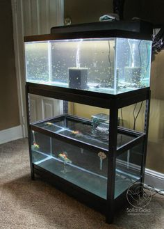 shelving unit from Lowe's that fits two 40 gallon breeder tanks perfectly