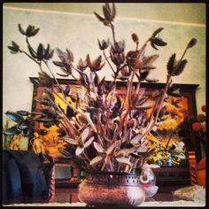 Non è mai troppo tardi: lo Zen e l'arte dei fiori secchi di Antonietta Bon (1)