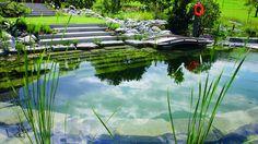 Natural Pool Ehrbar Family http://www.biotop-natural-pool.com