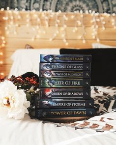 """354 Likes, 10 Comments - Haley • Blogger • Writer • 20 (@mythoughtsareabook) on Instagram: """"》 """"Aelin Galathynius had raised an army not just to challenge Morath, but to rattle the stars."""" -…"""""""