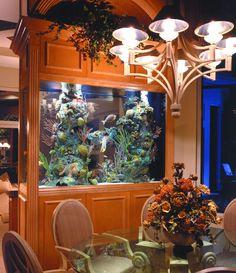 Room divider salt water aquarium with liverock.  My livingroom/diningroom could totally rock this!