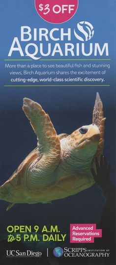 Birch Aquarium at Scripps brings to life the exciting discoveries of world-renowned Scripps Institution of Oceanography at UC San Diego. Birch Aquarium, Brochure Online, Local Activities, Beautiful Fish, Stunning View, Brochures, Places To See, Discovery, San Diego