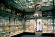Hunterian Museum — Royal College of Surgeons, London, England, United Kingdom