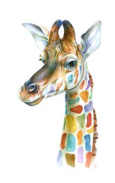 Colorful animal portraits