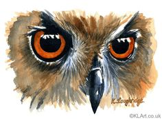 Owl | Watercolour on Saunders Waterford paper | Image size: 3.75 X 5.75 in | 9.5 X 14.5 cm | Framed: 10 X 8 in | 25 X 20 cm |  £75