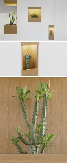 When designing the renovation of an apartment for a client in Israel, architect Itai Palti, included these wall pockets for plants, that add a touch of nature to the interior.