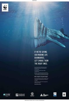 Publicité - Creative advertising campaign - WWF: If we're giving our marine life boundaries, let's make them the right ones