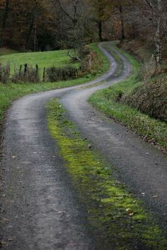 Inspiration for VIOLET GRENADE, a novel by Victoria Scott Beautiful Roads, Beautiful Places, Peaceful Places, The Road Not Taken, Winding Road, Back Road, Take Me Home, Farm Life, The Great Outdoors