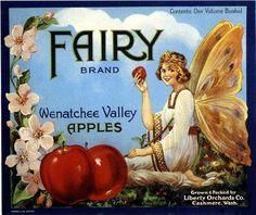 Cashmere Washington Fairy  Apple Crate Label Art Print